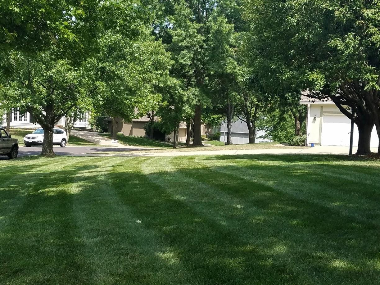 Lawn Care Service in Lenexa, KS, 66215