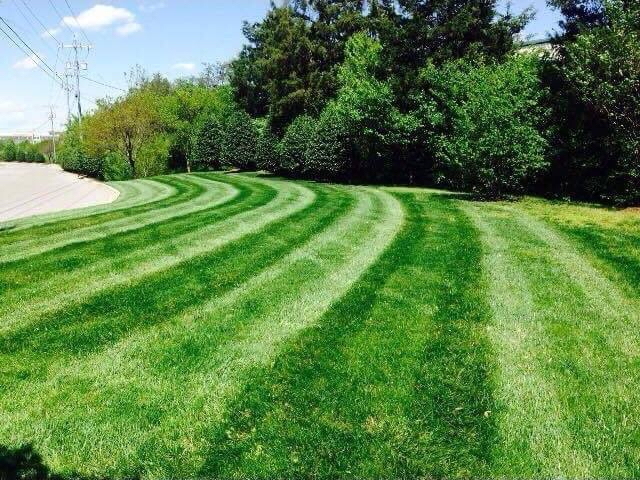 Lawn Care Service in Goodlettsville, TN, 37072