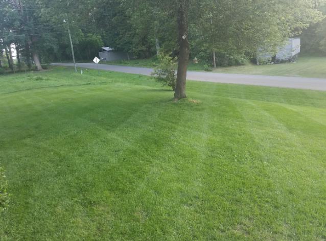 Lawn Care Service in Lincolnton, NC, 28092