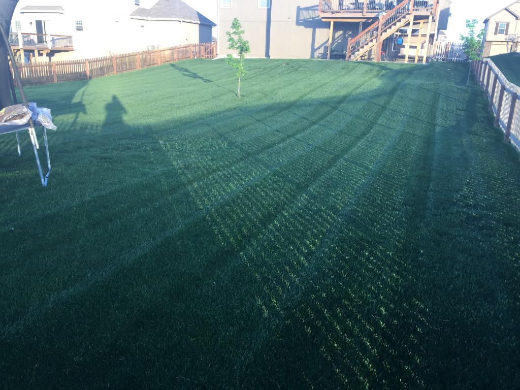 Lawn Care Service in Grain Valley , MO, 64029