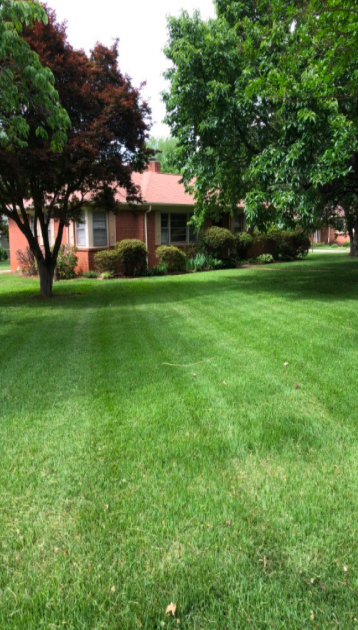 Lawn Care Service in Clover, SC, 29710