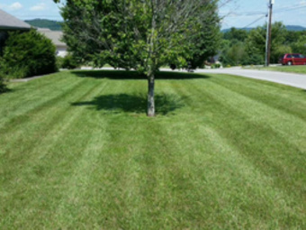Lawn Care Service in Somerset, KY, 42503
