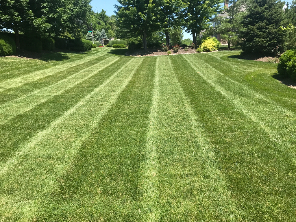 Lawn Care Service in Kansas City, KS, 66104