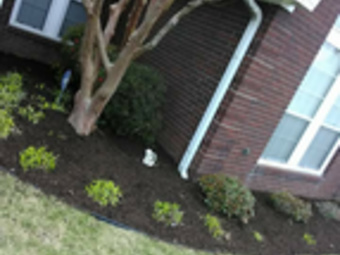 Lawn Care Service in Nashville, TN, 37217