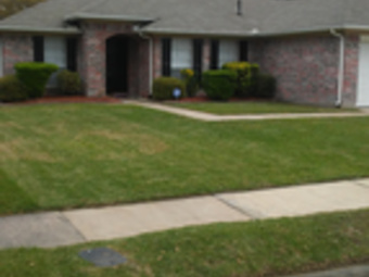 Lawn Care Service in Spring, TX, 77373