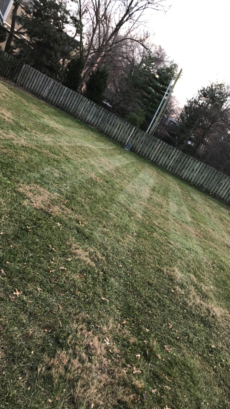 Lawn Care Service in Prairie Village, KS, 66207