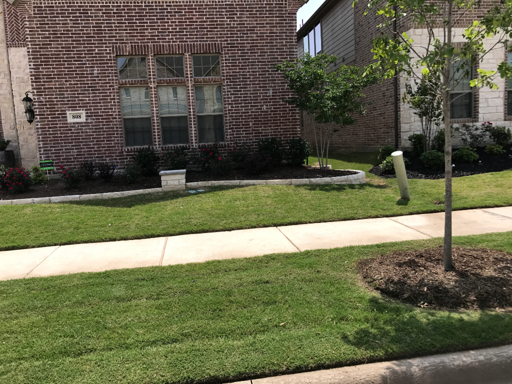 Lawn Care Service in Gunter, TX, 75058