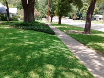Lawn Care Service in Palmer, TX, 75152
