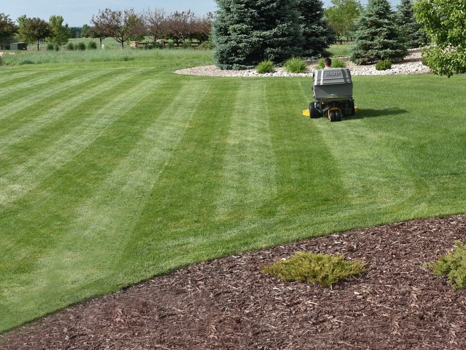 Lawn Care Service in Whitsett, NC, 27377