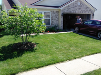 Lawn Care Service in Indianapolis , IN, 46229