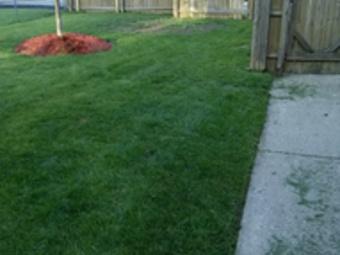 Lawn Care Service in Park City, IL, 60085