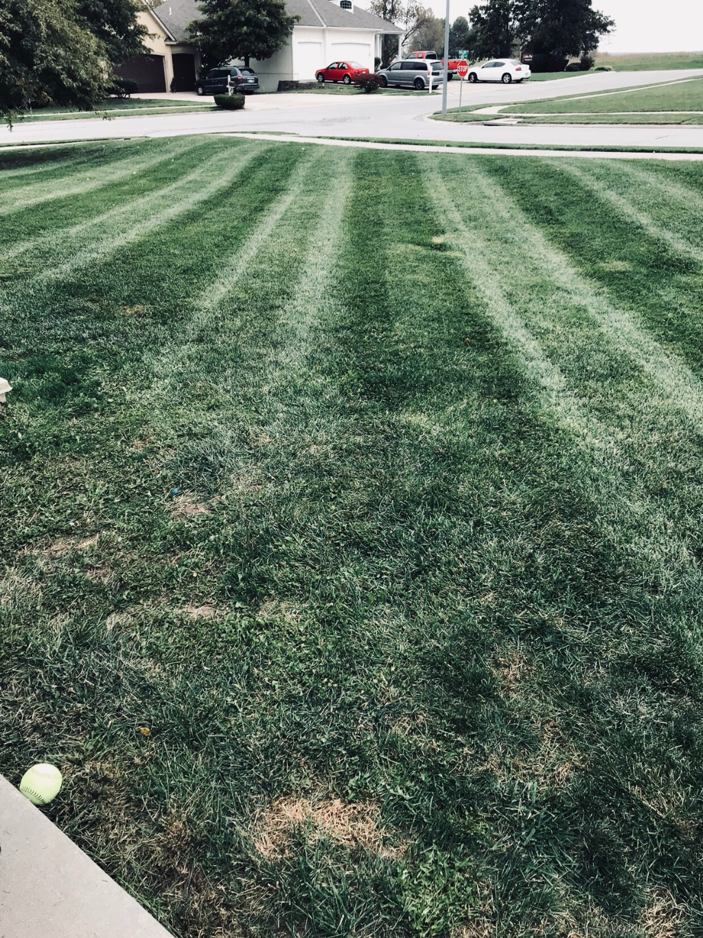 Lawn Care Service in Smithville, MO, 64089