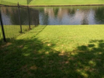 Lawn Care Service in Spring, TX, 77090
