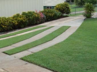 Lawn Care Service in Asheville, NC, 28715