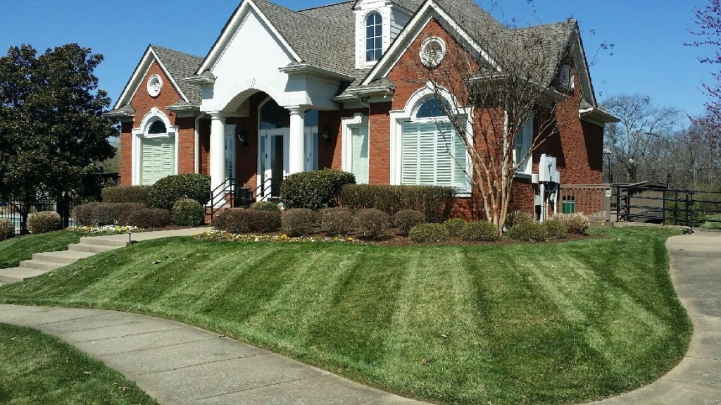 Lawn Care Service in Springfield, TN, 37172