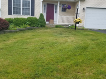 Lawn Care Service in Watervliet, NY, 12189