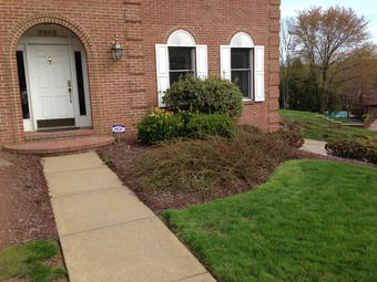 Lawn Care Service in Elizabeth , PA, 15037