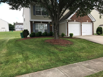 Lawn Care Service in Raleigh , NC, 27608