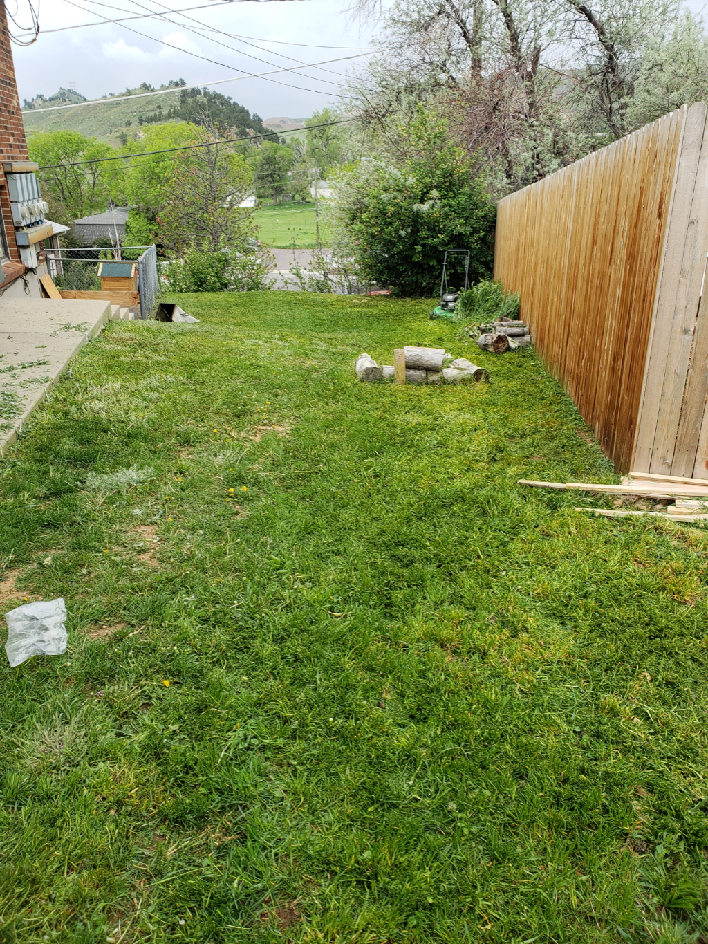 Lawn Care Service in Westminster, CO, 80031