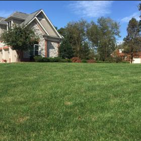 Lawn Care Service in Gary, IN, 46408