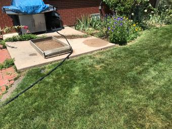 Lawn Care Service in Denver, CO, 80235
