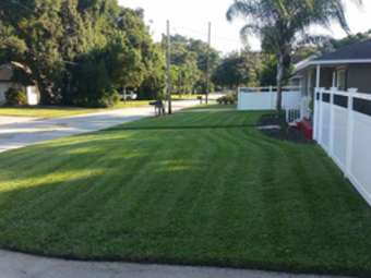 Lawn Care Service in Orlando, FL, 32837