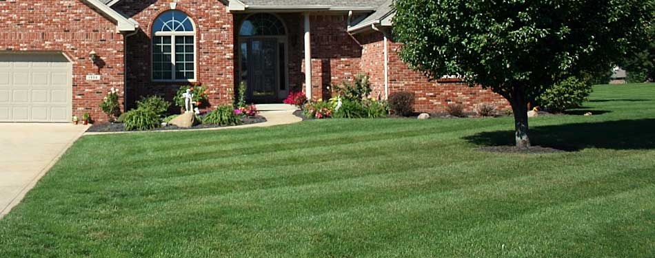 Lawn Care Service in Westminster , CO, 80021