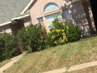 Lawn Care Service in Plano, TX, 75075