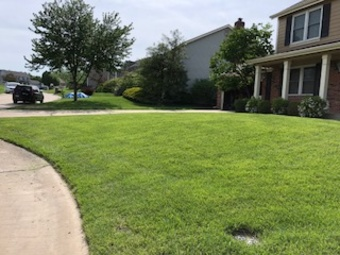 Lawn Care Service in St. Peters, MO, 63376