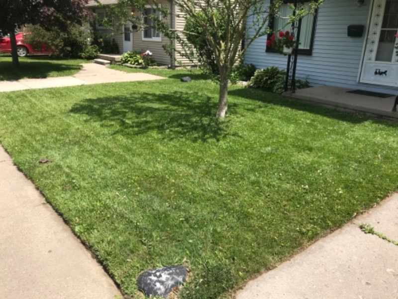 Lawn Care Service in Dearborn Heights, MI, 48125
