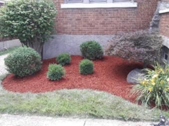 Lawn Care Service in Cincinnati, OH, 45238