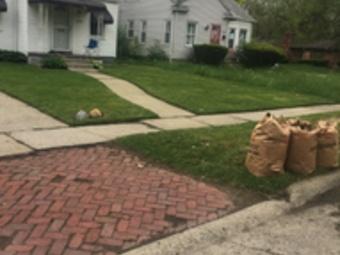 Lawn Care Service in Detroit, MI, 48235