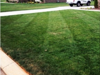 Lawn Care Service in Humboldt , TN, 38343