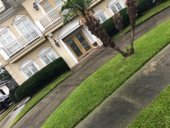 Lawn Care Service in Metairie, LA, 70003