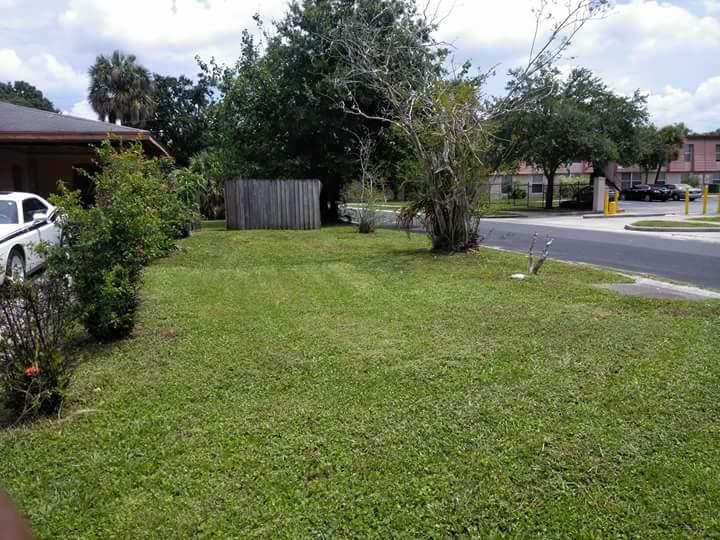 Lawn Care Service in Tampa, FL, 33612