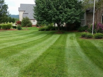 Lawn Care Service in Eureka, MO, 63025