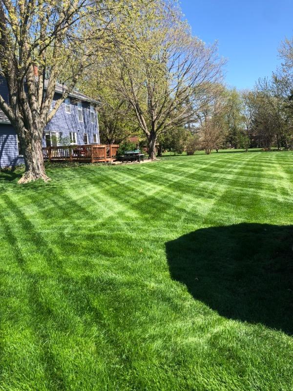 Lawn Care Service in Aurora, IL, 60505