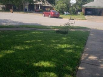Lawn Care Service in Austin, TX, 78703