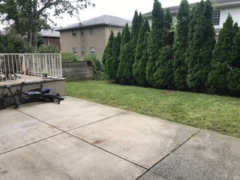 Lawn Care Service in , NY, 10469