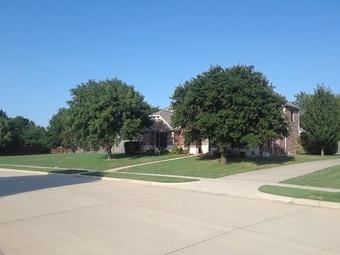 Lawn Care Service in Alvarado, TX, 76063