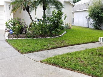 Lawn Care Service in Tampa, FL, 33615