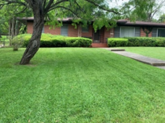 Lawn Care Service in San Antonio, TX, 78224