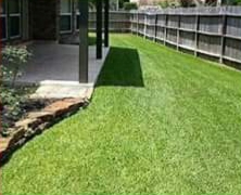 Lawn Care Service in Houston, TX, 77093