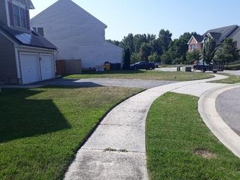 Lawn Care Service in Essex, MD, 21221