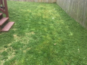 Lawn Care Service in Riviera Beach, MD, 21226