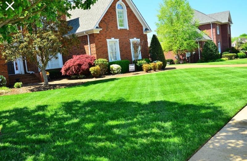 Lawn Care Service in Oak Lawn, IL, 60453