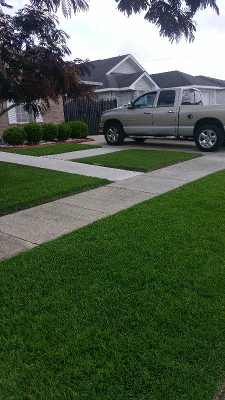 Lawn Care Service in New Orleans, LA, 70122