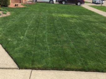 Lawn Care Service in Detroit, MI, 48235