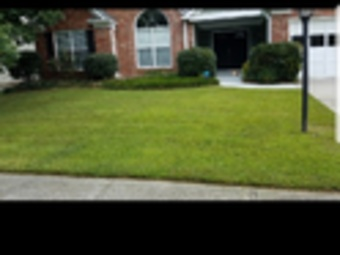 Lawn Care Service in Flowery Branch, GA, 30542
