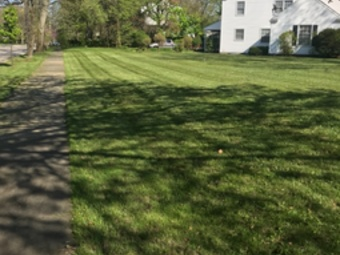 Lawn Care Service in Cleveland, OH, 44102